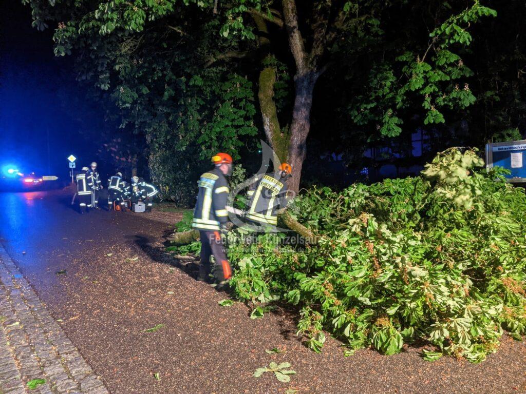 Zwei Einsatzkräfte beim zersägen des Baumes