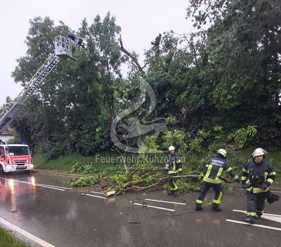 Einsatzkräfte beim beseitigen des zersägten Baumes